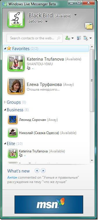 Контакт-лист Windows Live Messenger