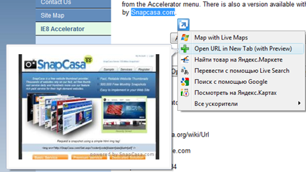 OpenURL-accelerator2