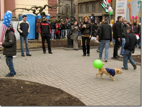 Собачка с шариком