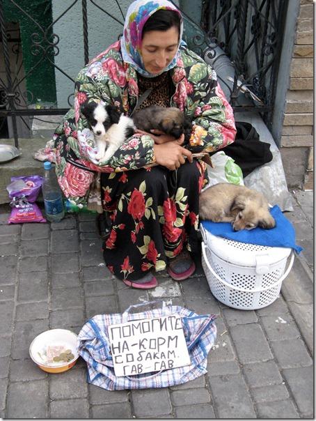 Помогите на корм собакам
